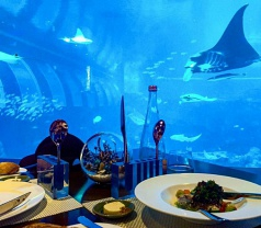 Ocean Restaurant By Cat Cora Photos