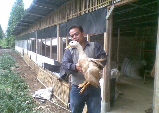 Edar Triatna & Bebek Peking