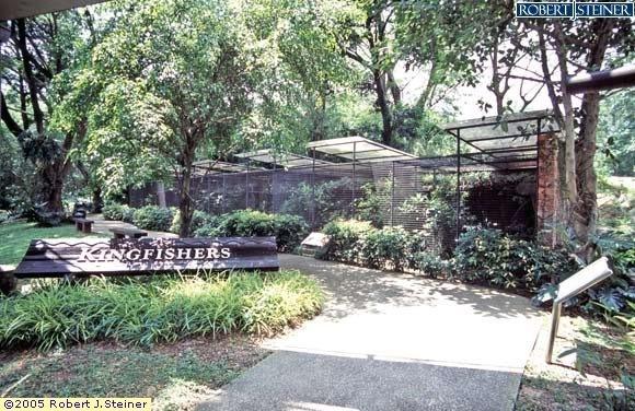 Jurong Bird Park, Kingfisher Corner