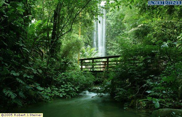 Jurong Bird Park Waterfall Aviary
