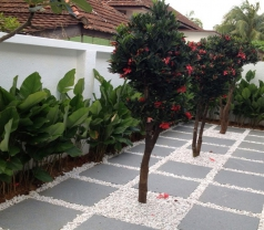 G. G. Landscape + Construction Pte Ltd Photos